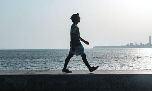 Coastal Boardwalk - Walks in and Around Ahuriri